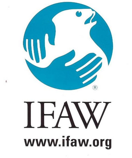 IFAW logo.preview