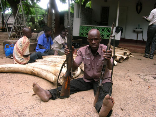 One of the poaching masterminds after being aprehended with two illegal rifles used to committ wildlife crime. In the background are the other suspects and the ivory recovered.